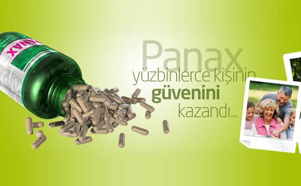 Kibarlı Panax